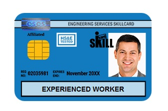 blue-card-experienced-worker-skill-card