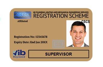 gold-card-supervisor-jib-londra